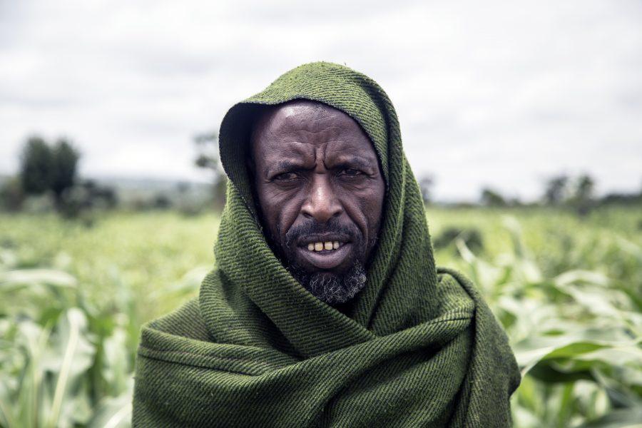 En landmand i Fedis, Etiopien